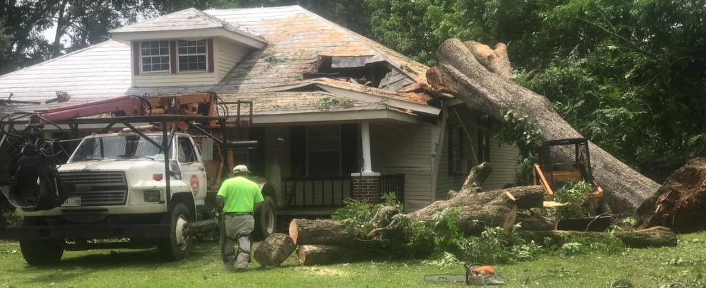 tupelo storm damage cleanup